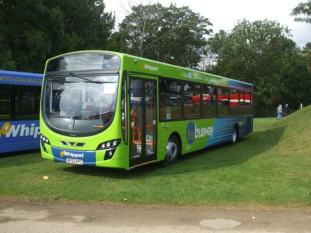 DSCF6036 Go-Whippet (Whippet Coaches) BF63 HFC