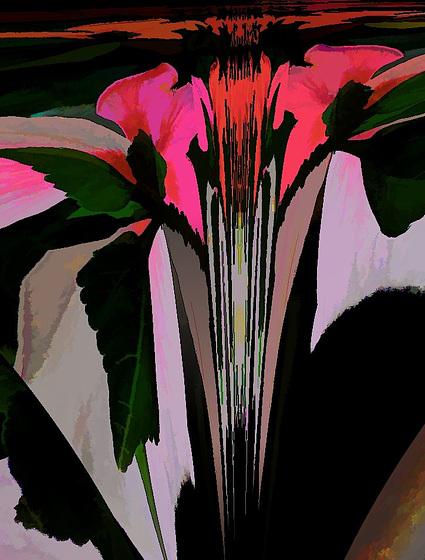 hibiscus variation