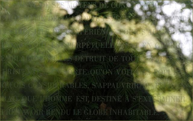 Réflexions.....