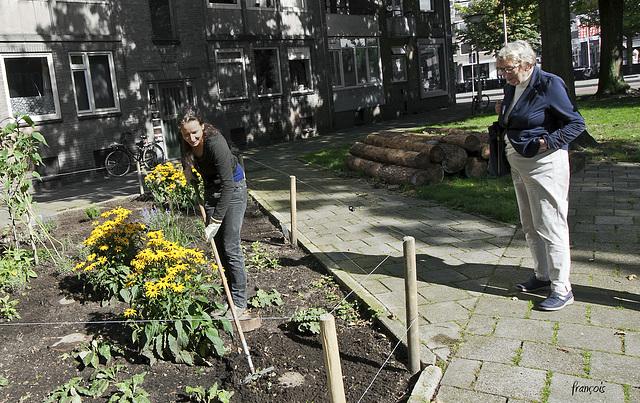 Stoeptuinieren / Sidewalk gardening