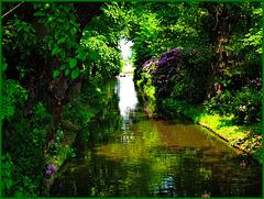 Blickschneise im Wörlitzer Gartenreich