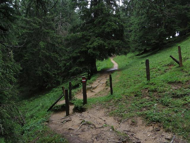 Wanderweg