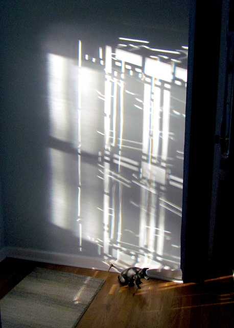 Sunlight and Shadows (2)