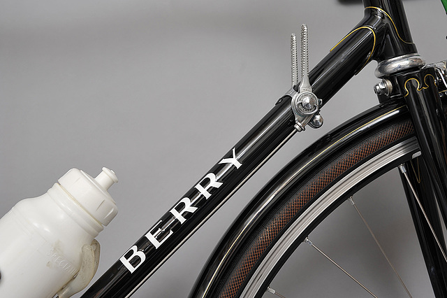 #721891 Berry block-style downtube lettering (2014)