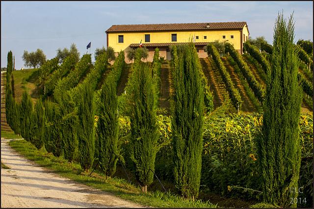 Tuscany - outside Vinci Village