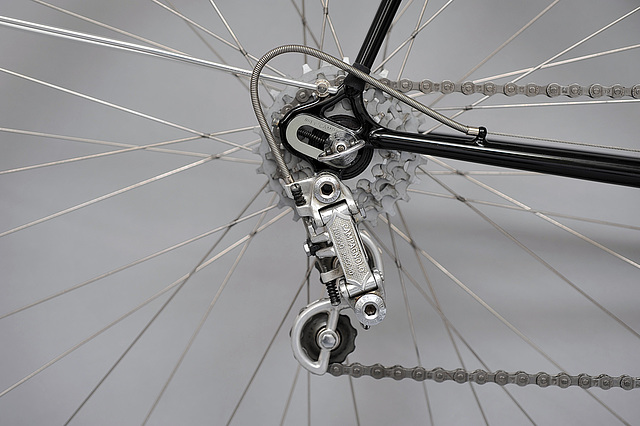 #721891 Ball end stays, Campagnolo 1010 dropout, Record derailleur  (2014)