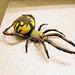 Toy Spider
