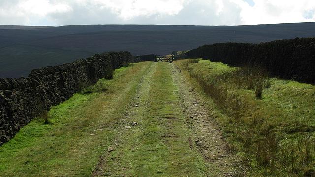 Bray Clough Track