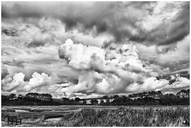 Otter estuary clouds