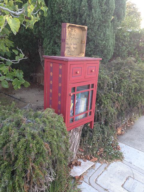 Little Free Library in my neighborhood