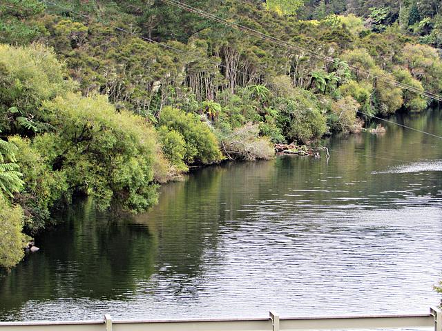 Bushy Banks, Lake Waipapa