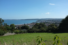 Paignton from Preston Down