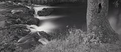 Derbyshire Wye - Monsal Dale - The Ash Tree Pool