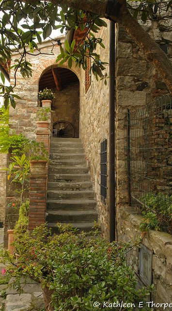 Greve in Chianti Tuscany 052814-003