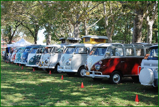 So many VW Buses!