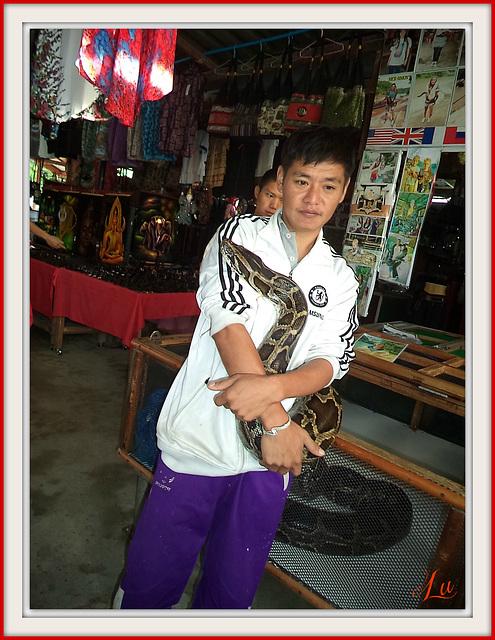 ** Thaïlande **