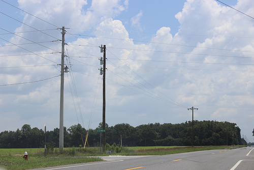 Escambia River Electric Co-Op 12.47kV - Santa Rosa County, FL