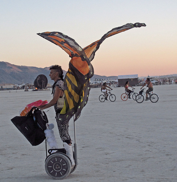 Segway Butterfly (0521)