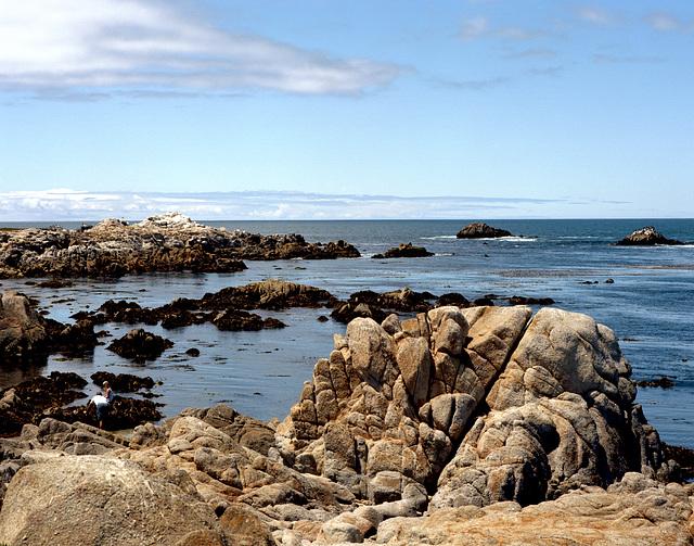 Del Monte Seascape