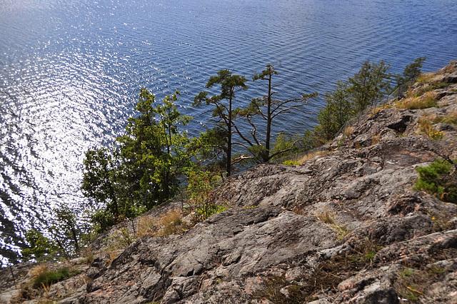 Felsen - Meer - Bäume