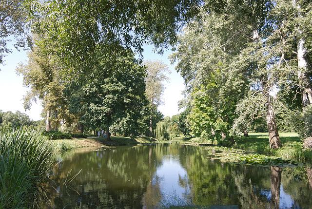 Silberdunst-Teich