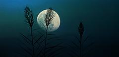 La super lune du 09/09/2014