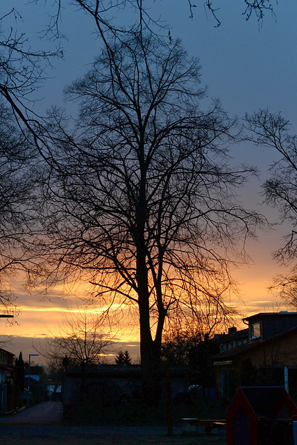 Sonnenuntergang(1)