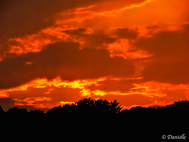 Un ciel flambloyant…..
