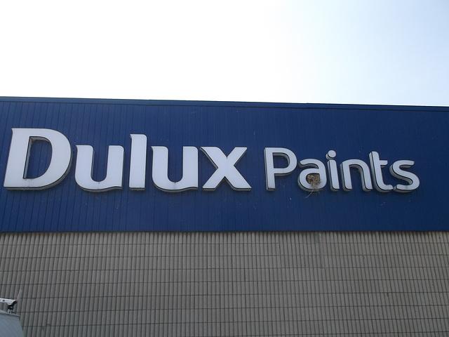 Painted nest / Nid de luxe en peinture.
