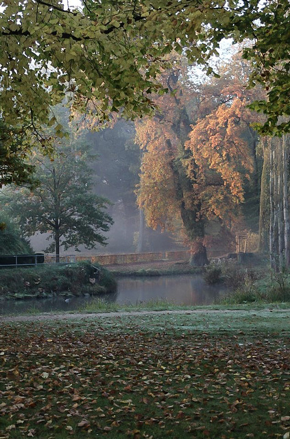 Autumn in Wilhelmsbad