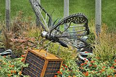 An Iron Butterfly –  Le jardin de verre et de métal, Botanical Garden, Montréal, Québec