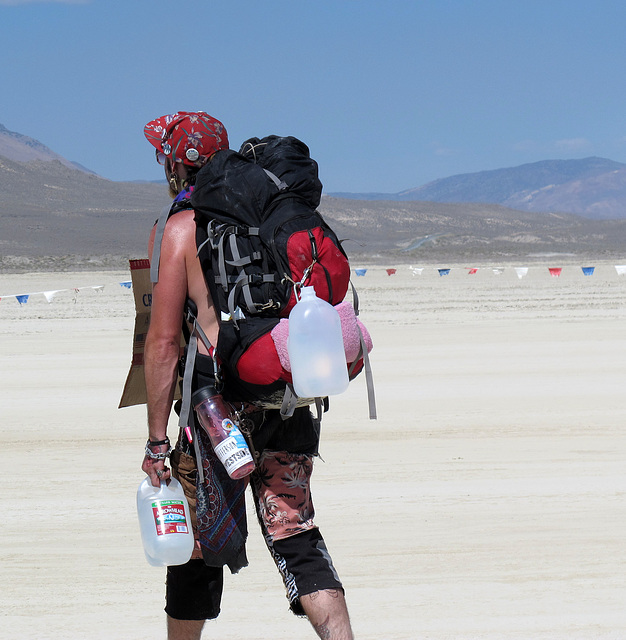 Needs One Ticket on the Entrance Road for Burning Man 2014 (0343)