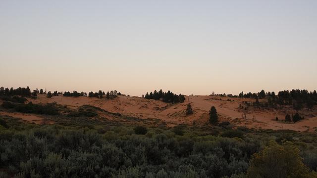 2014.09: UT: Coral Pink Sand Dunes Park