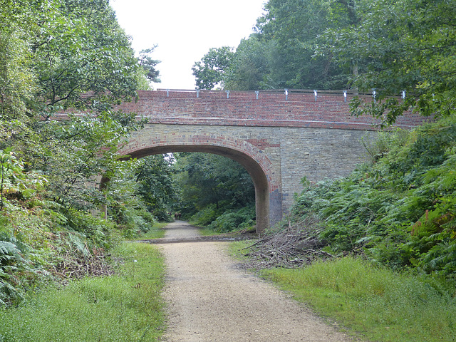 Southampton and Dorchester Railway (4) - 31 August 2014