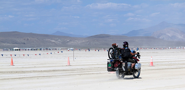Why Not on the Entrance Road for Burning Man 2014 (0348)