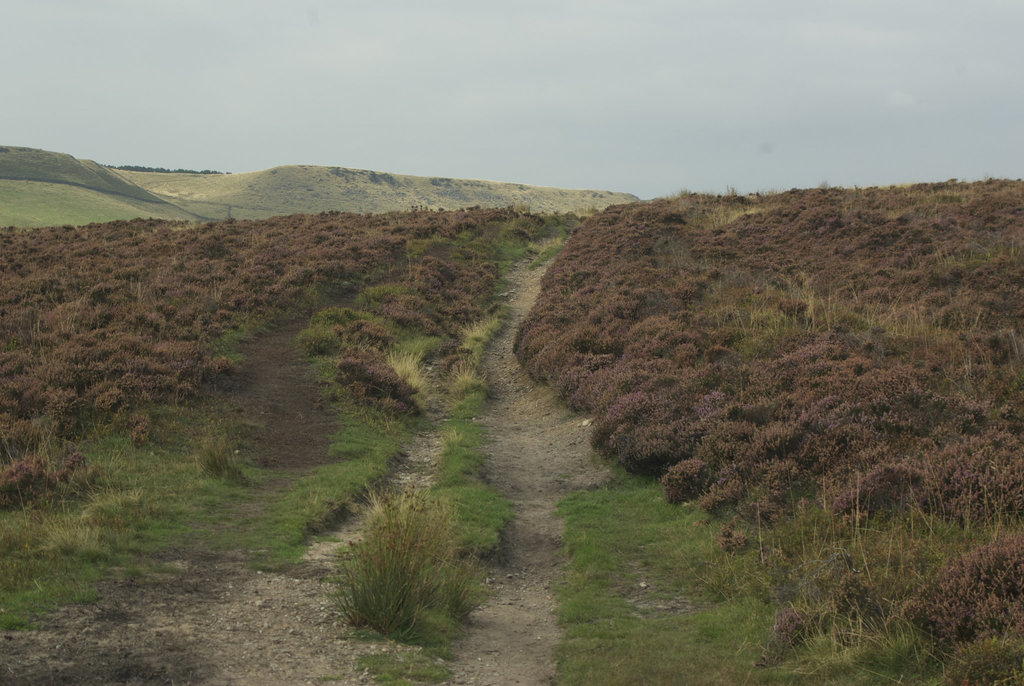 Cown edge from Matley Moor