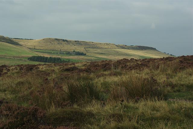 Cown edge from Matley Moor