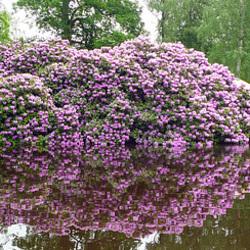 Sweden - Ronneby, Brunnspark