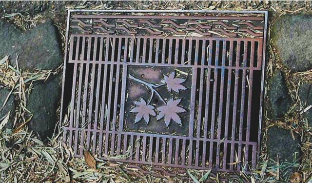 manhole bamboo forest