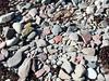 A stony beach