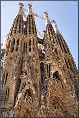 La Sagrada Família ~Barcelona ~