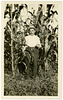 The Nebraska Corn Crop Was Not a Tee-total Failure in 1926