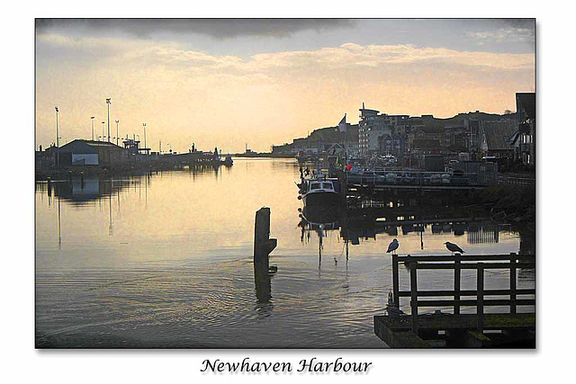 Newhaven Harbour - 19.12.2013