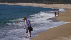 Beach Quality Inspectors