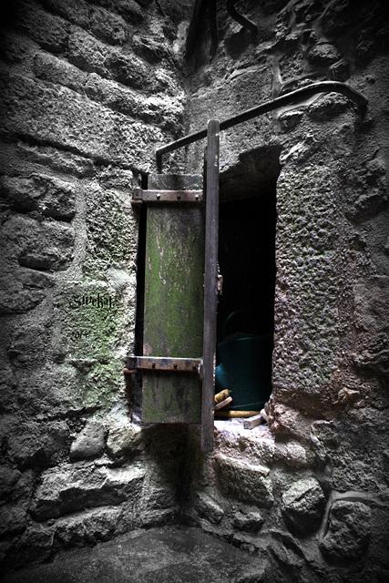 Mord in der Abtei ....... der Gärtner war´s