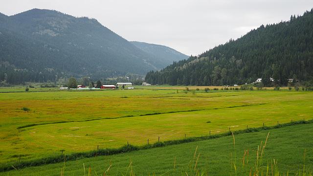 Farm Near Kamloops