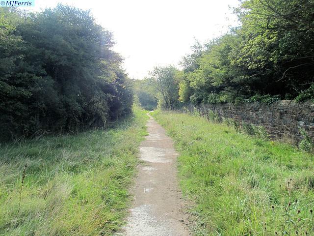 01 a walk home