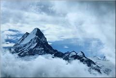 Das Schreckhorn in den Wolken