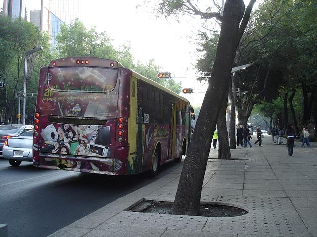 Ali Vianate bus.
