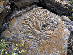 Ripples in old lava